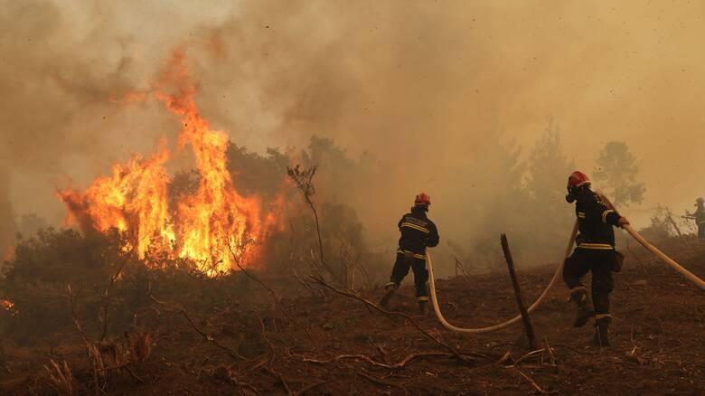 Φωτιές Ηλεία - Γορτυνία: Σε θέση μάχης για τις αναζωπυρώσεις