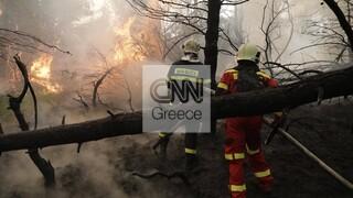 Φωτιά στην Εύβοια: Εκκενώνεται το Ασμήνιο - Στις φλόγες η Αβγαριά - Συνεχίζεται η τιτάνια μάχη