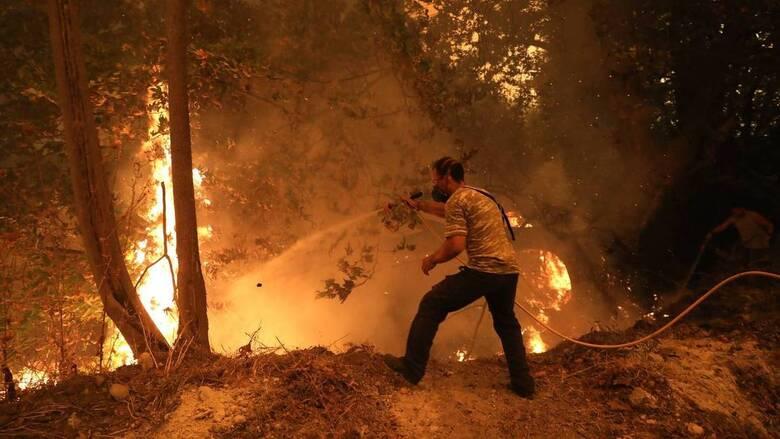 Η Ακαδημία Αθηνών συστήνει ειδική επιτροπή για την ανθεκτικότητα των δασικών οικοσυστημάτων