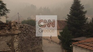 Φωτιές Εύβοια: Την Τετάρτη ξεκινούν αυτοψίες στις πυρόπληκτες περιοχές
