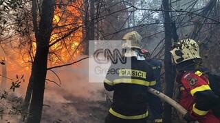 Φωτιά Εύβοια: Δίχως τέλος ο πύρινος εφιάλτης - Αναζωπυρώσεις σε Ασμήνι, Πευκί και Αγριοβότανο