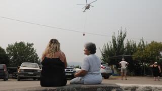 Πυρκαγιές: Ενεργοποιήθηκε η γραμμή 1110 για ψυχολογική υποστήριξη στους πληγέντες