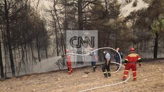 Φωτιά Εύβοια: Ολονύχτια μάχη με τις αναζωπυρώσεις - Σε ύφεση πλέον τα μέτωπα