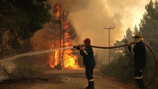 Oλονύχτια μάχη στη Γορτυνία - Kάηκαν σπίτια - Το πύρινο μέτωπο απειλεί χωριά