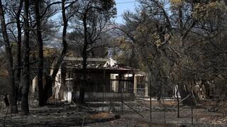 Φωτιές: Τι περιλαμβάνει το πακέτο στήριξης για νοικοκυριά, επιχειρήσεις και αγρότες