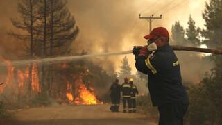 Αρκαδία: Δύο πυροσβέστες με αναπνευστικά προβλήματα και ένας με εγκαύματα