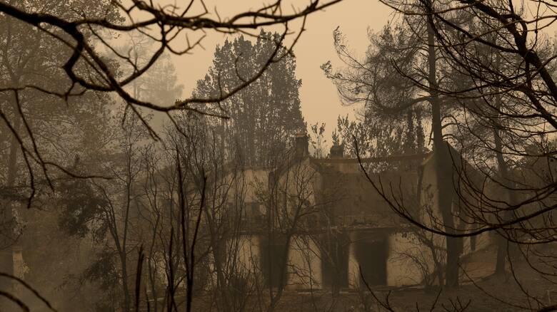 Πυρκαγιές - Θωμαϊδης: Θα χρειαστεί αρκετός καιρός να καθαρίσει η ατμόσφαιρα από τα μικροσωματίδια