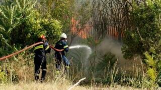 Φωτιά Ανατολική Μάνη: Σε τρία σημεία υπάρχουν ακόμα εστίες