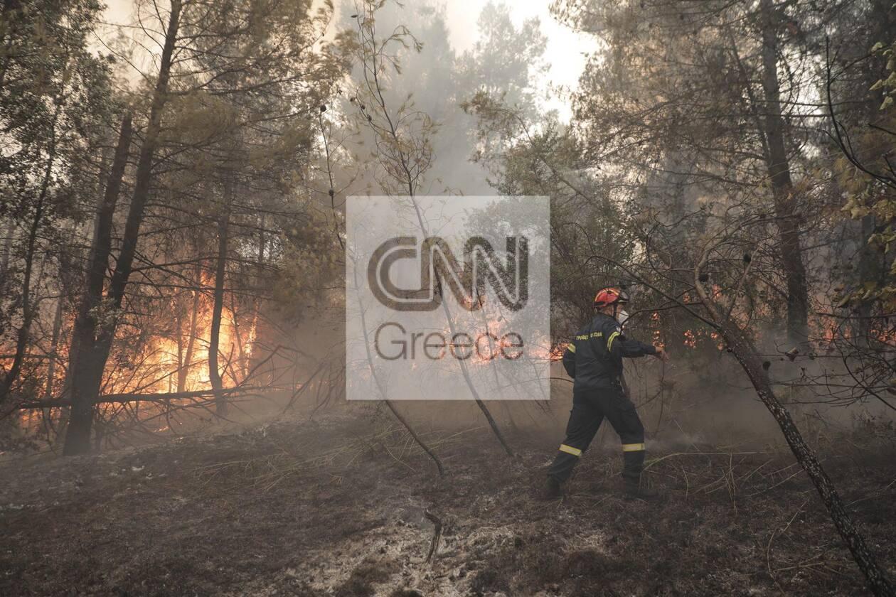 https://cdn.cnngreece.gr/media/news/2021/08/11/277545/photos/snapshot/evoia_ogdoh-mera-11-38.jpg