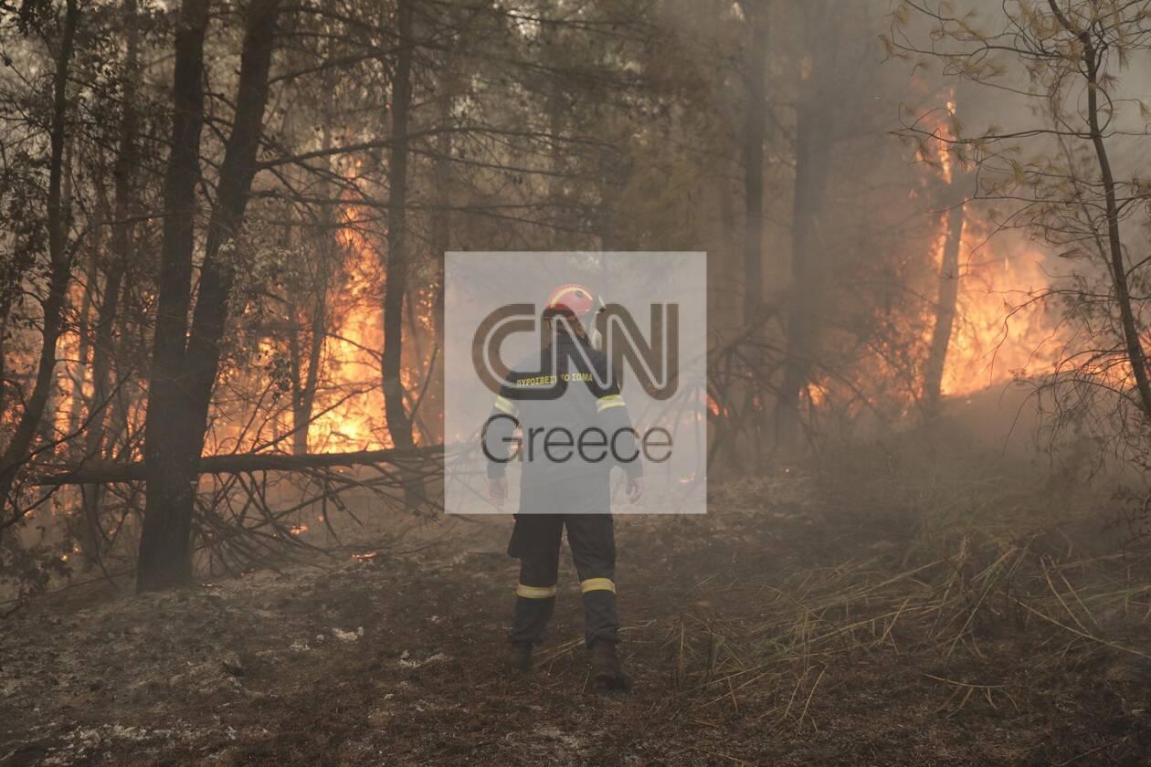 https://cdn.cnngreece.gr/media/news/2021/08/11/277545/photos/snapshot/evoia_ogdoh-mera-12-83.jpg
