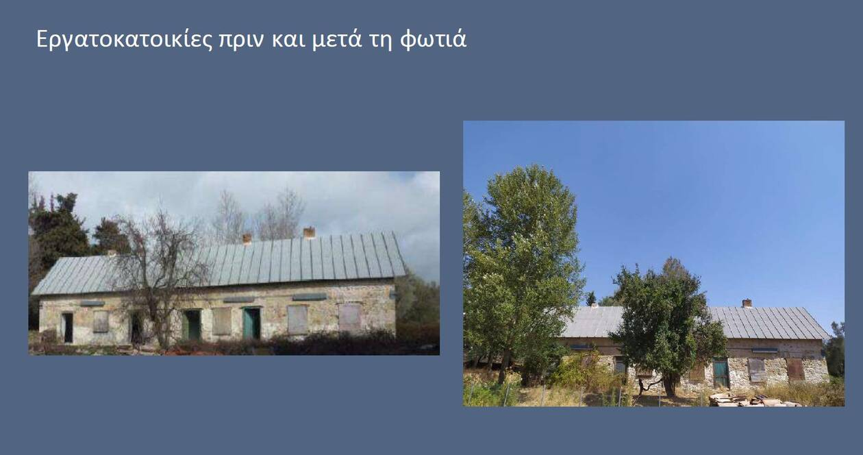 https://cdn.cnngreece.gr/media/news/2021/08/11/277558/photos/snapshot/TATOI13.jpg