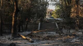 Φωτιά στο Τατόι - Μενδώνη: Ζημιές σε επτά κτήρια - Μικρές απώλειες σε μνημεία