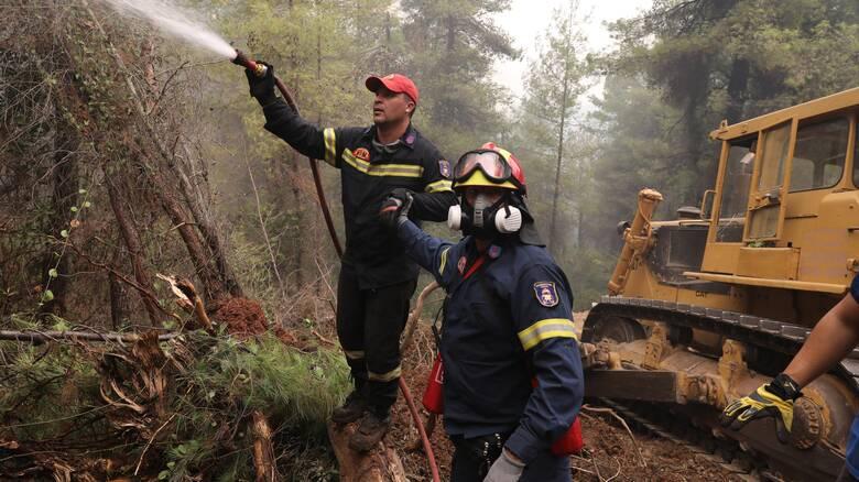 Φωτιά Εύβοια: Σταμάτησαν στη θάλασσα οι φλόγες στο Αγριοβότανο - Καλύτερη εικόνα στο Ασμήνι