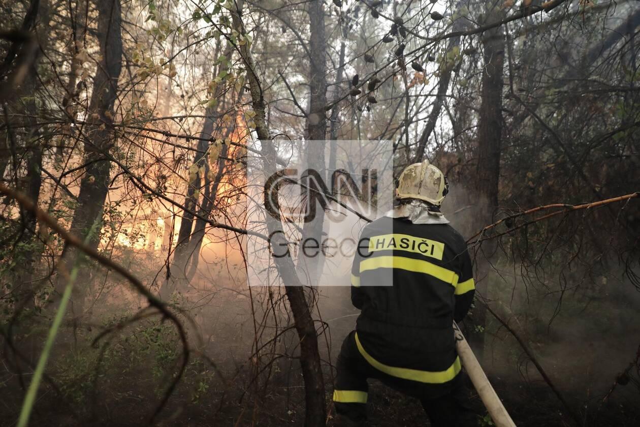 https://cdn.cnngreece.gr/media/news/2021/08/11/277571/photos/snapshot/evoia_ogdoh-mera-7-73.jpg