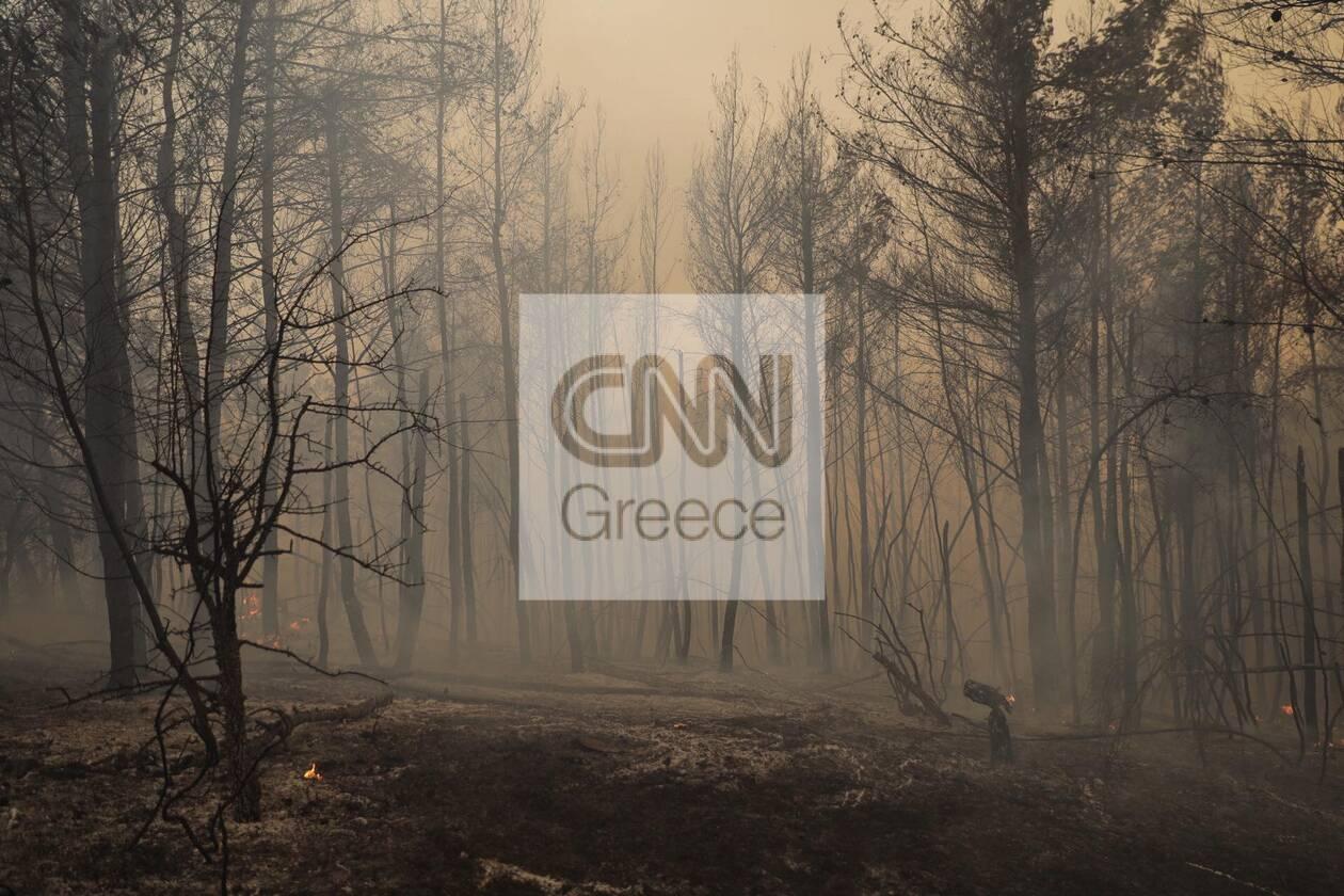 https://cdn.cnngreece.gr/media/news/2021/08/11/277571/photos/snapshot/evoia_ogdoh-mera-8-68.jpg
