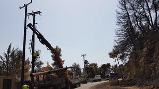 Πυρκαγιές - ΔΕΔΔΗΕ: Συνεχίζεται η αποκατάσταση ζημιών στο δίκτυο ηλεκτροδότησης