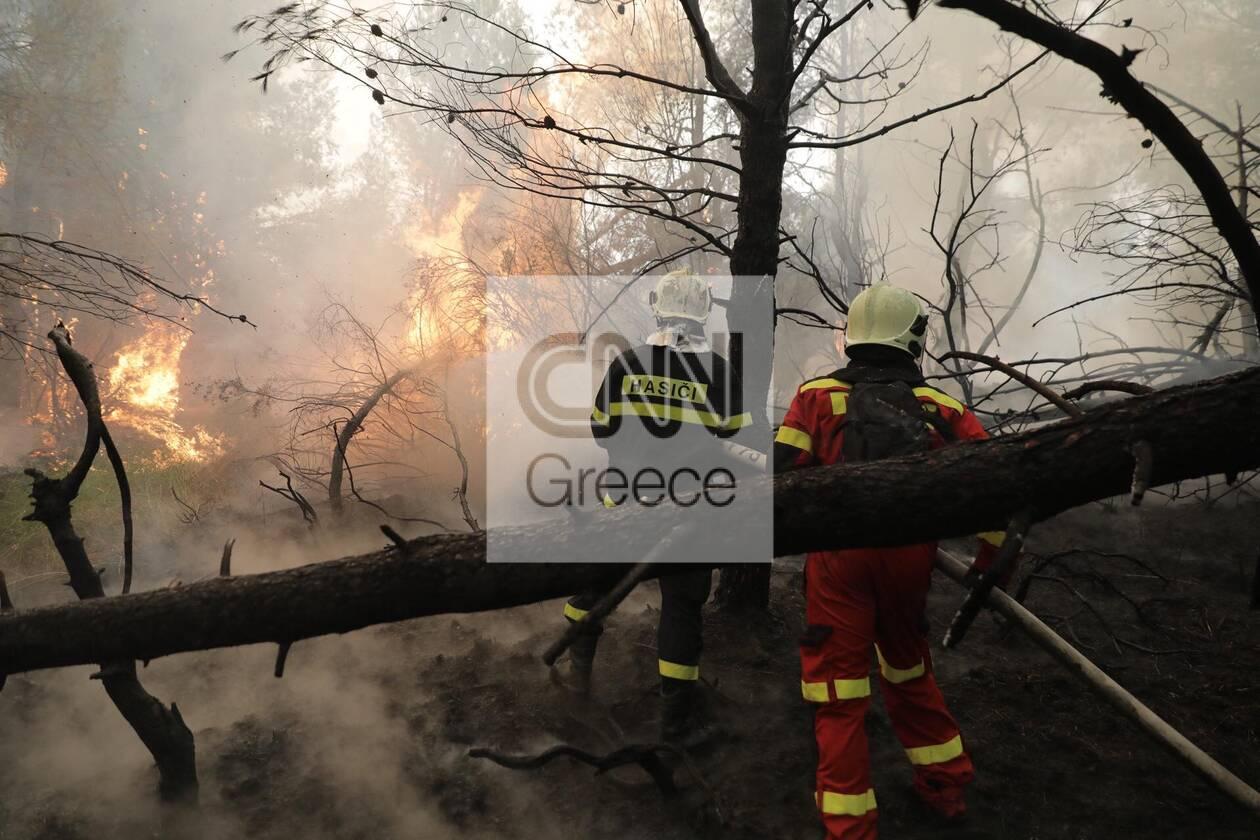 https://cdn.cnngreece.gr/media/news/2021/08/11/277590/photos/snapshot/evoia_ogdoh-mera-6-85.jpg