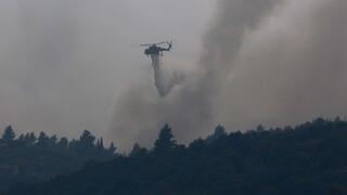 Φωτιά στη Γορτυνία: Ολονύχτια μάχη με τα πύρινα μέτωπα