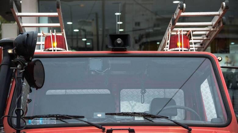 Φωτιά στην Τανάγρα: Δεν πρόκειται για κάτι ανησυχητικό, λέει η Πυροσβεστική