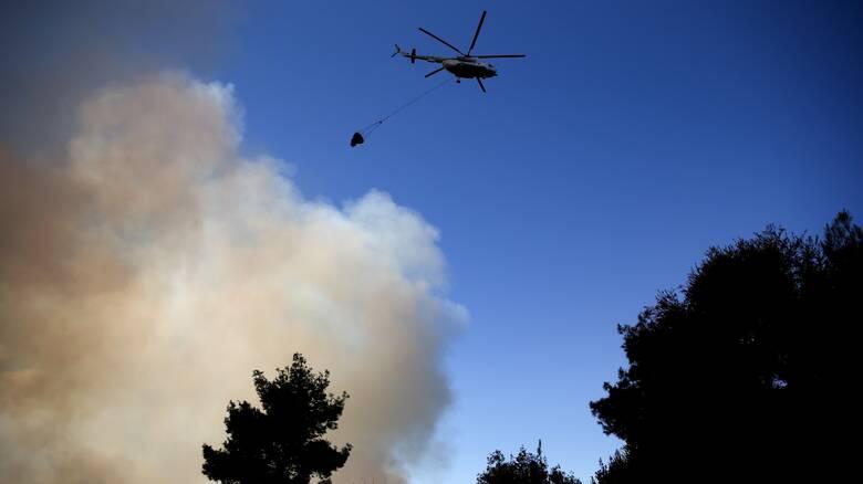 Χαλκιδική: Υπό έλεγχο πυρκαγιά σε δασική έκταση - Σε ύφεση οι φωτιές που ξέσπασαν από κεραυνούς