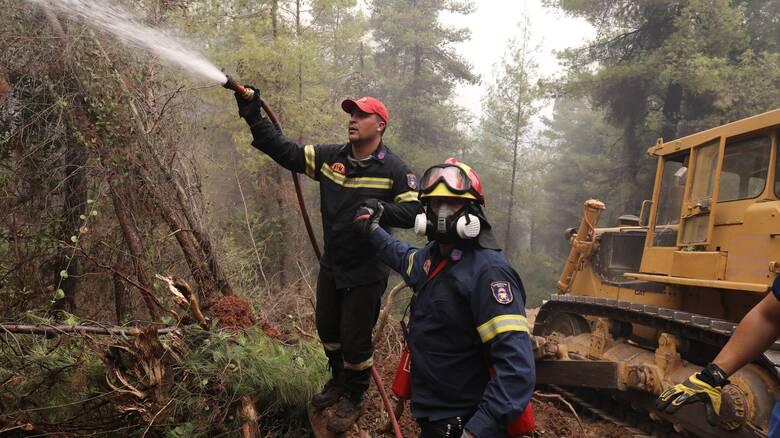 «Μάχη» με αναζωπυρώσεις σε Γορτυνία - Μάνη - Σε κατάσταση έκτακτης ανάγκης περιοχές της Πελοποννήσου