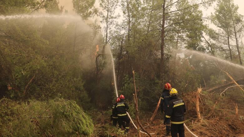 Φωτιά Εύβοια: Σκληρή μάχη με νέο μέτωπο στον Μίστρο
