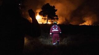 Δωρεά του πρίγκιπα Κάρολου στον Ελληνικό Ερυθρό Σταυρό για τη στήριξη των πυρόπληκτων