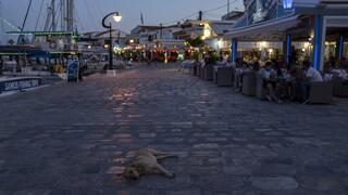 Κορωνοϊός: Σημείο καμπής της πανδημίας ο Δεκαπενταύγουστος - Τα μέτρα της κυβέρνσης