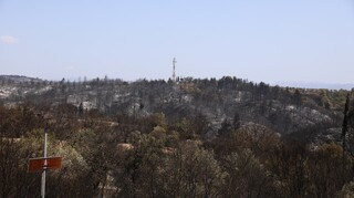 ΦΕΚ: Τα μέτρα για την αποκατάσταση του φυσικού περιβάλλοντος μετά τις φωτιές
