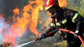 Φωτιές Πελοπόννησος: Δυνάμεις της Πυροσβεστικής επιχειρούν σε Γορτυνία, Αρχαία Ολυμπία και Αν. Μάνη