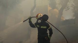 Πολιτική Προστασία: Σε πολύ υψηλό κίνδυνο πυρκαγιάς έξι περιοχές την Κυριακή