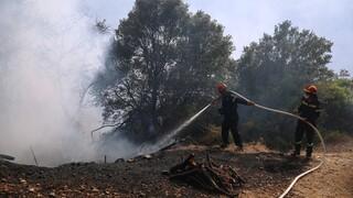 Λουτράκι: Καταγγελία για σκουπίδια και πλαστικά στο χώρο που εκδηλώθηκε η φωτιά