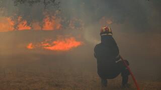 Υπό έλεγχο δύο νέες εστίες πυρκαγιάς σε Κέρκυρα και Καστοριά