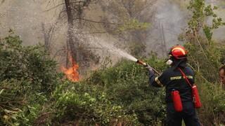 Πολύ υψηλός κίνδυνος πυρκαγιάς τη Δευτέρα σε Εύβοια, Αττική, Βοιωτία, Πελοπόννησο και Χίο