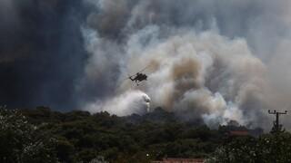 Σπίρτζης για φωτιές σε Κερατέα και Βίλια: Γιατί δεν επιχειρεί το ρωσικό Beriev;