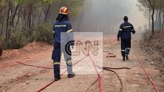 Πυρκαγιά Κερατέα: Ολονύχτια μάχη για να μην ξεφύγει προς τον εθνικό δρυμό Σουνίου