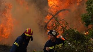 Φωτιά Βίλια: Mάχη για να κρατήσουν τις φλόγες μακριά από τα σπίτια - Μπαράζ εκκενώσεων οικισμών