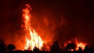 Φωτιές σε Βίλια και Κερατέα - Ολονύχτια μάχη στα πύρινα μέτωπα