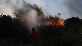 Φωτιές: Συνεχίζεται η μάχη στα Βίλια- Εκκενώθηκαν 5 οικισμοί και ένα γηροκομείο - Σε ύφεση η Κερατέα