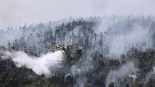 Βίλια: Σε τρία μέτωπα η φωτιά - Στη μάχη με τις αναζωπυρώσεις και τα ρωσικά ilyushin