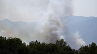 Μαίνεται η φωτιά στη νότια Γαλλία: Απομάκρυνση χιλιάδων πολιτών στο Σεν Τροπέ