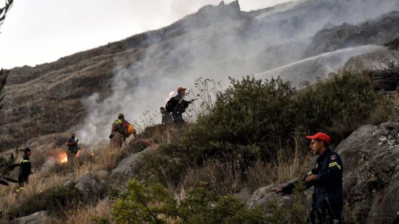Καβάλα: Φωτιά στους Αντιφιλίππους του δήμου Παγγαίου