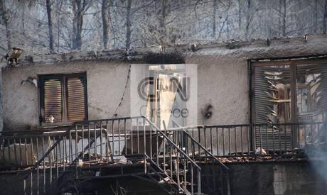 Φωτιά Βίλια: Οδοιπορικό του CNN Greece στις καμένες εκτάσεις