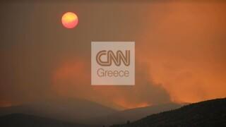 Φωτιά Βίλια: Δύσκολη μάχη σε δύο μέτωπα από πυροσβέστες, Στρατό, κατοίκους