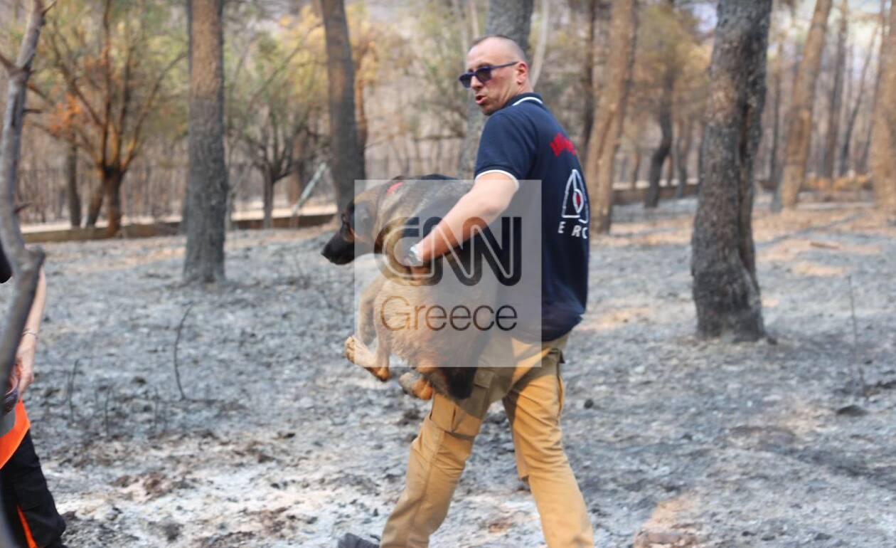 https://cdn.cnngreece.gr/media/news/2021/08/18/278216/photos/snapshot/kamena10-2.jpg