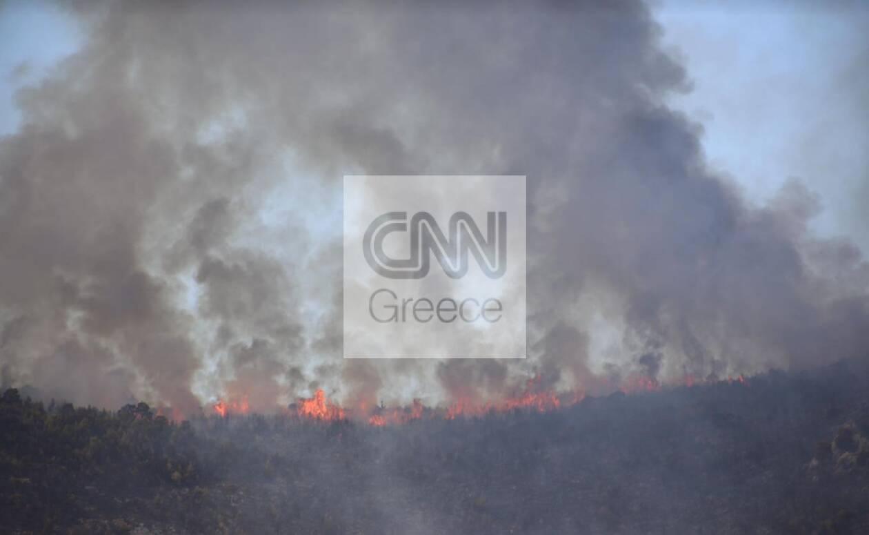 https://cdn.cnngreece.gr/media/news/2021/08/18/278216/photos/snapshot/vilia1.jpg