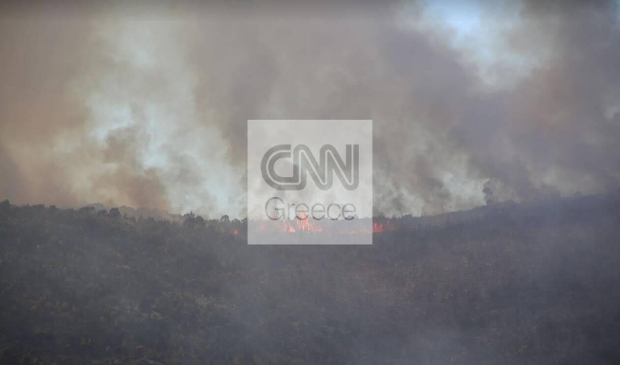 https://cdn.cnngreece.gr/media/news/2021/08/18/278216/photos/snapshot/vilia2.jpg