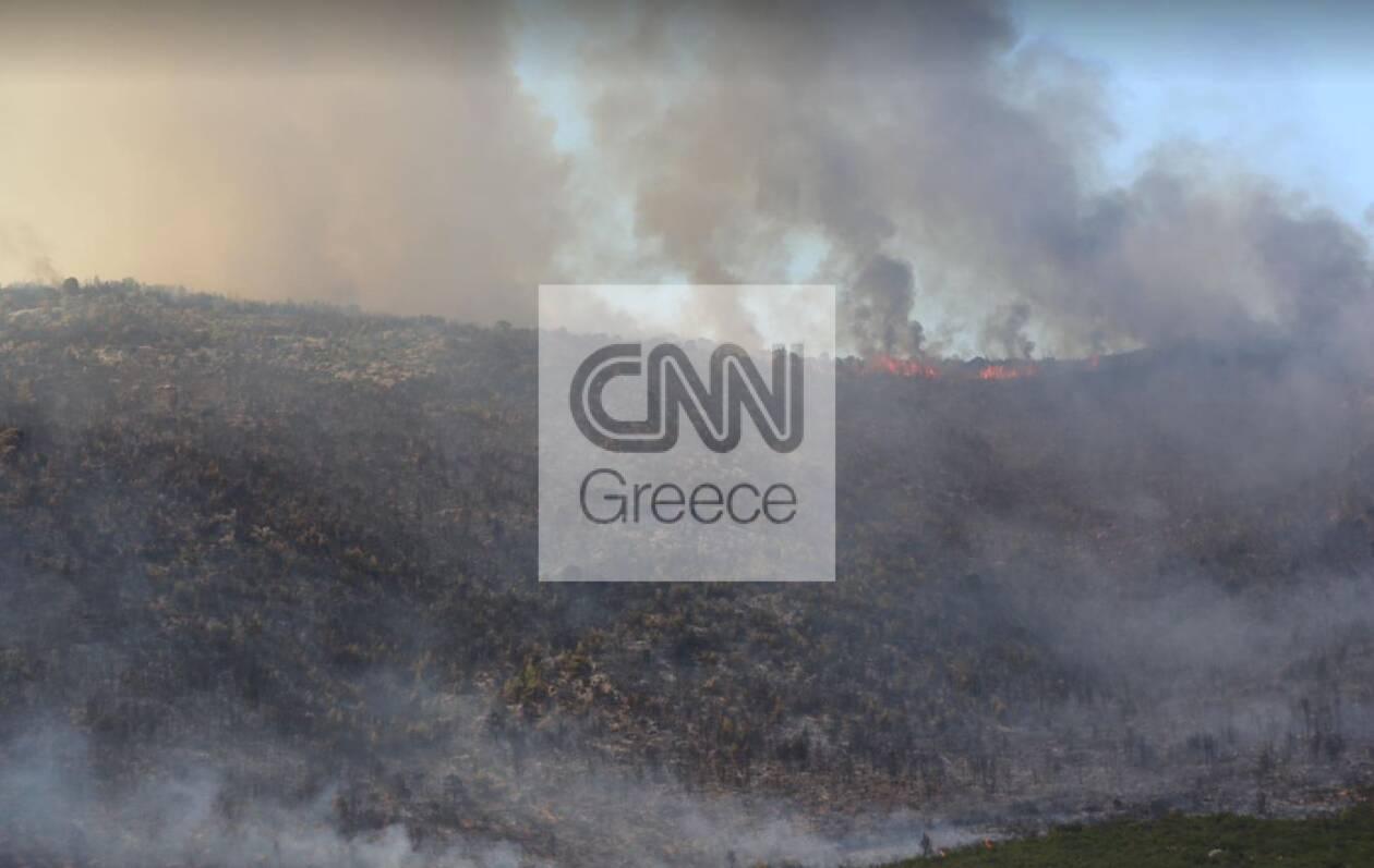https://cdn.cnngreece.gr/media/news/2021/08/18/278216/photos/snapshot/vilia3.jpg