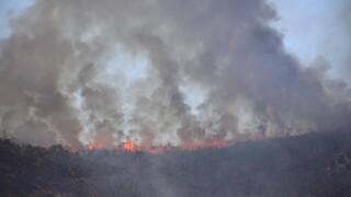 Φωτιά Βίλια: Μαίνεται το μέτωπο χιλιομέτρων - «Στάχτη» πάνω από 80.000 στρέμματα δάσους