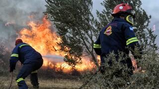 Σταθόπουλος: Διπλασιάζονται τα κρούσματα Covid στους πυροσβέστες
